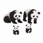 TERRA - FAMILLE DE PANDAS
