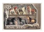ROYAL BREEDS - ENS. DE 6 CHEVAUX (7,5 CM)